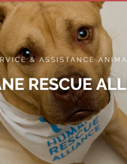Humane Rescue Alliance cover image