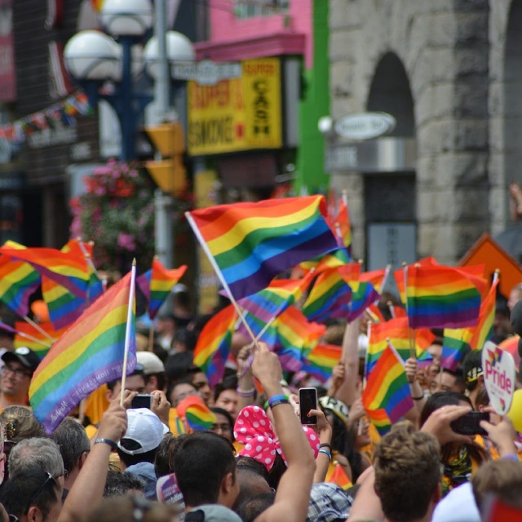 a crowd of people raise small rainbow flags in the air